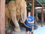 Gordon Cacioppo (BUS '15) in Chiang Mai, Thailand, outside the Elephant Nature Park.
