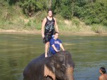 Lauren Cacioppo (BUS '10) at the elephant camp in Kanchanaburi, Thailand.