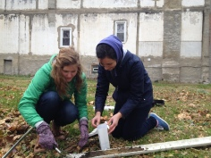 P3 students collect soil in 2013.
